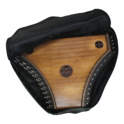 soft case for medieval psaltery